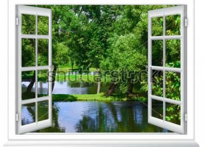 Fotomural Vista desde la ventana en el cuerpo de agua y el árbol en verano.