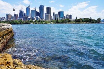 Fotomural Vista panorámica del horizonte del centro de Sydney desde el puerto