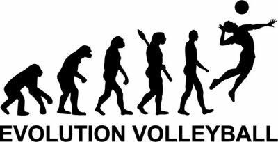 Fotomural Voleibol Evolución