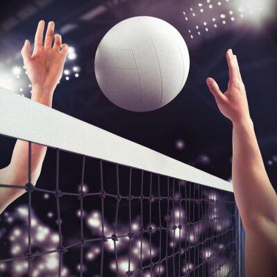 Fotomural Volleyball match