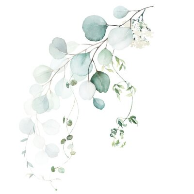 Fotomural Watercolor floral illustration bouquet - green leaf branch collection, for wedding stationary, greetings, wallpapers, fashion, background. Eucalyptus, olive, green leaves, etc.
