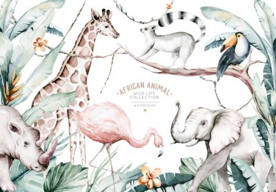 Fotomural Watercolor illustration of African Animals: lemur, flamingo and giraffe, toucan and rhipo, rhino and elephant isolated white background. Safari savannah animals