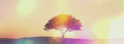 Fotomural Widescreen puesta de sol del paisaje del árbol con efecto retro