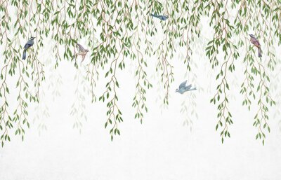 Fotomural Willow branches hanging from above with birds on a white background. Wallpaper, murals and wall paintings for interior printing.