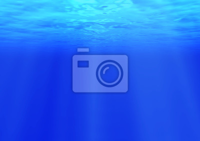 Fotomural 海 中