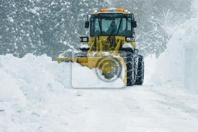 Fotomural 除雪