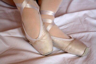 Fotomural Zapatillas de punta