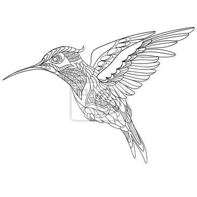 Zentangle colibrí estilizado de dibujos animados, aislado sobre ...