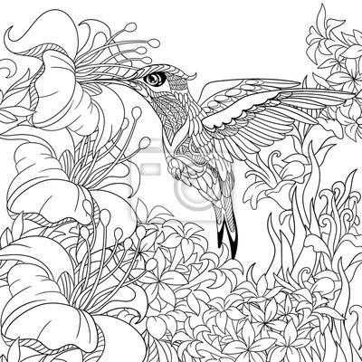 Zentangle estilizado dibujos animados colibrí volando alrededor ...