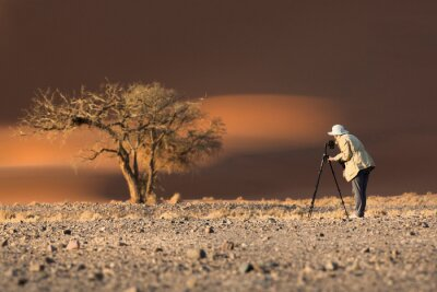A photographer photographs a tree in Sossusvlei.