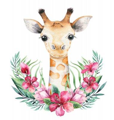 Póster A poster with a baby giraffe. Watercolor cartoon giraffetropical animal illustration. Jungle exotic summer print.