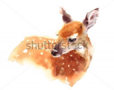 Póster Acuarela bebé ciervo pintado a mano ilustración cervatillo aislado sobre fondo blanco