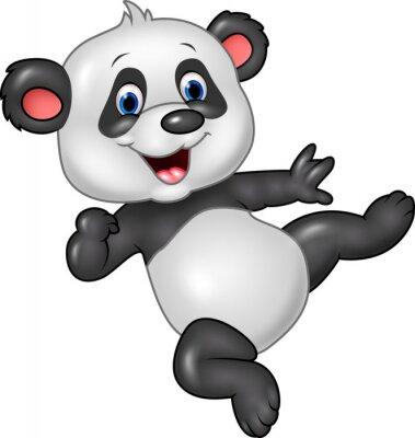 Póster Adorable bebé panda aislada sobre fondo blanco