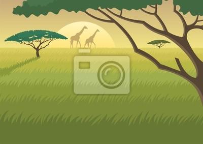 África Paisaje