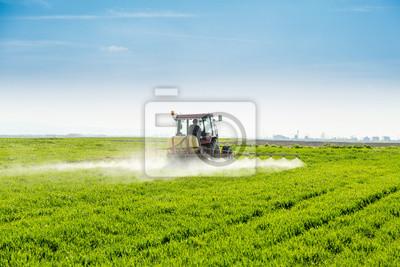 Agricultor, pulverización, verde, trigo, campo