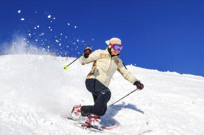 Póster Alegría de esquí