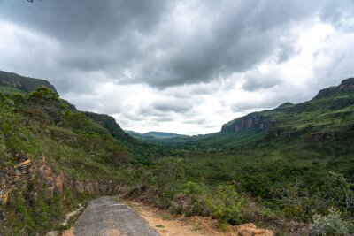 An old trail through the green vegetation in Brazil