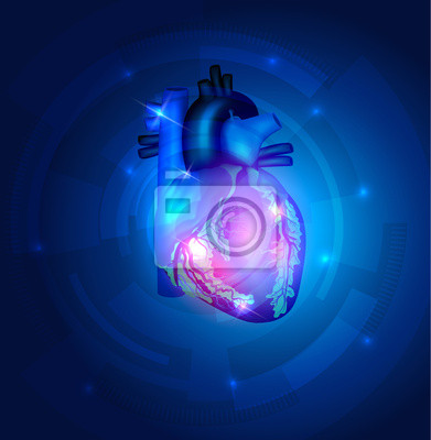 Anatomía del corazón sobre un fondo azul hermoso tecnología carteles ...
