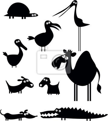 Póster Animales