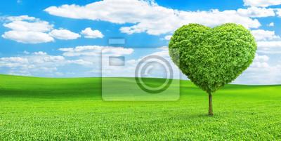 árbol En Forma De Corazón En El Campo Carteles Para La Pared