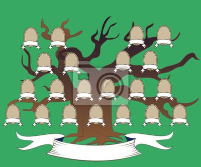 árbol Genealógico De Roble Y Las Células De Los Familiares Carteles