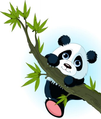 Póster Árbol gigante de escalada de la panda