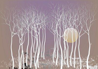 Póster Árboles abstractos del bosque con licencia fuera con la visión nocturna de la luna, árbol blanco