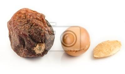Argan frutas con nuez, con shell y almendra de argan