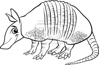 Armadillo Animales Para Colorear De Dibujos Animados