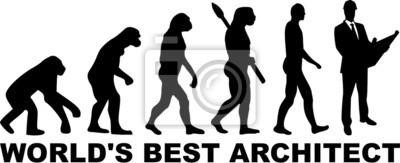Arquitecto Arquitectura Evolución