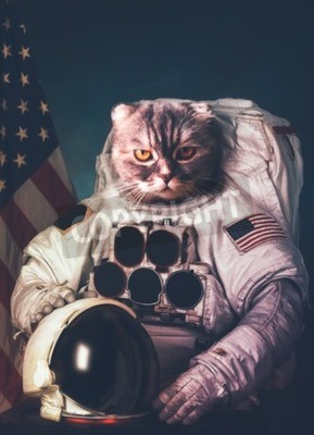 Póster Astronauta hermoso del gato.
