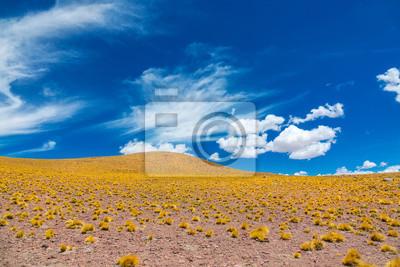 Atacama Altiplana desierto sabana y montañas paisaje, Miniques, Chile, América del Sur