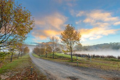 Autumn colored trees and clouds colored yellow by the rising sun