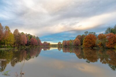 Autumn colored trees on the banks of the pond