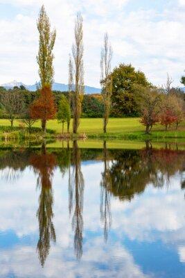 Autumn trees reflection on mirror-llike pond