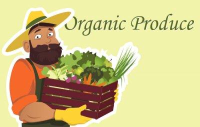 Póster Bearded agricultor o jardinero en un sombrero de la celebración de una caja de madera llena de verduras frescas y frutas, copia espacio a la derecha, EPS 8 ilustración vectorial, sin transparencias