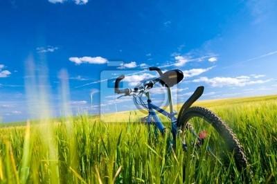 Bicicleta en el campo