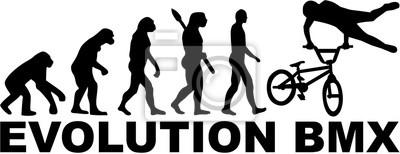 Bicicleta Evolution BMX