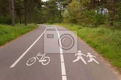 Bicicletas y carriles para caminar en el bosque. Deporte al aire libre, fitness