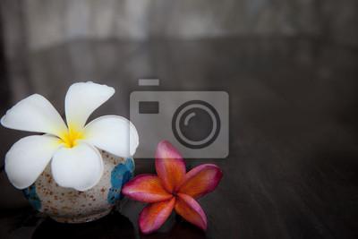 blancas y rojas flores frangipani sobre piso mojado