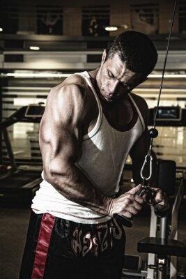 Póster Bodybuilder entrena los músculos en el gimnasio