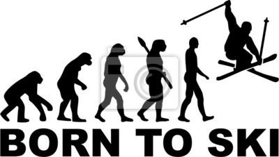 Born to Ski Stunt Evolución