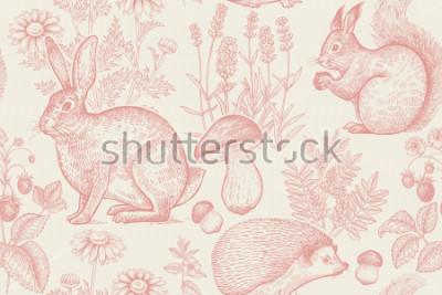 Póster Bosque de animales y plantas de patrones sin fisuras. Liebre, erizo, ardilla, fresas, flores de lavanda, manzanilla y setas. Dibujo a mano. Blanco y rojo. Grabado de la vendimia. Ilustración vectorial
