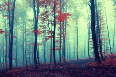 Póster Bosque de la fantasía del otoño de la vendimia