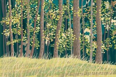 Póster Bosque verde