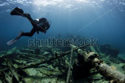 Póster Buceador nadando en un naufragio