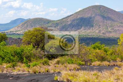 Bush y el paisaje de la sabana en África Tsavo West, Kenia, África