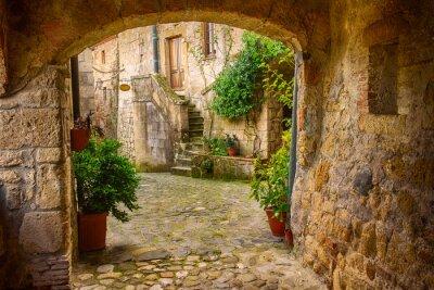Póster Calle estrecha de la ciudad de tuff medieval Sorano con arco, plantas verdes y adoquines, los viajes de fondo de Italia