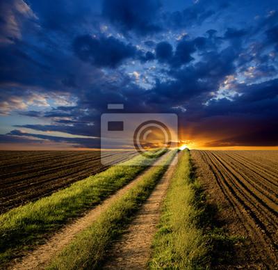 Camino a la puesta del sol