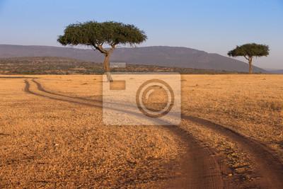 Camino en el Parque Nacional Masai Mara Kenia